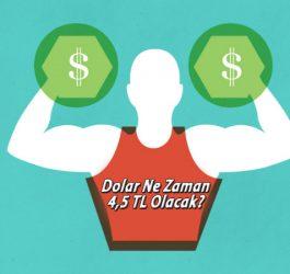 dolar ne zaman 4,5 TL olacak